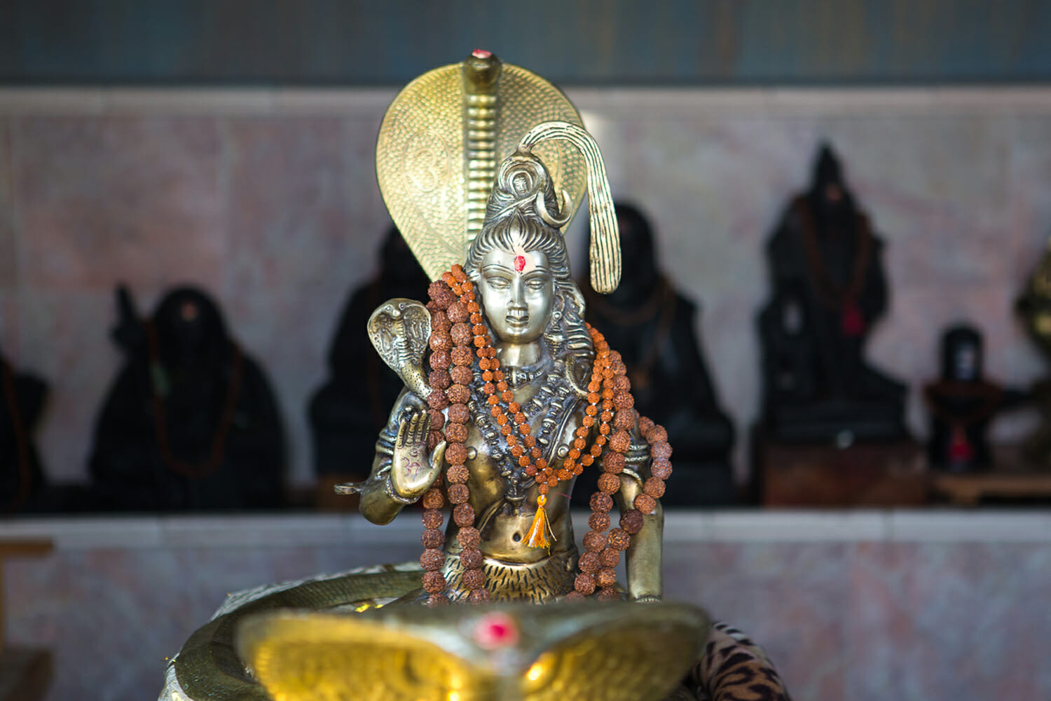 Paths to Peace: Lord Siva & Pure Consciousness at the Sivananda Yoga Ranch