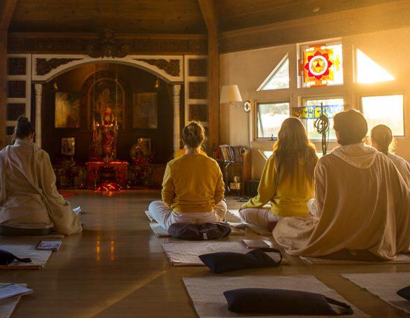 Meditation in the Morning Light | Sivananda Yoga Ranch