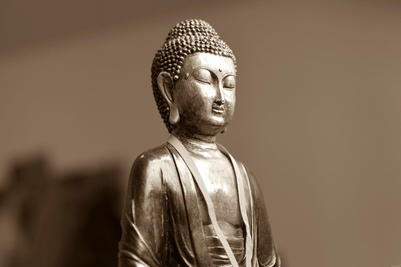 Essentilas of Meditation Retreat at The Sivananda Yoga Ranch