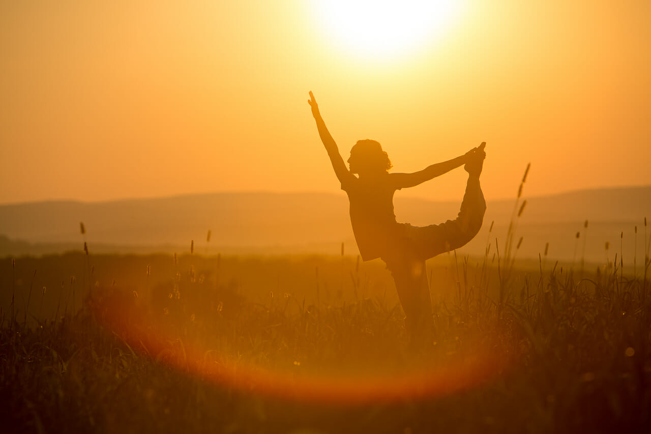 Less Stress, More Joy: Yogic Methods for a Better Life at the Sivananda Yoga Ranch