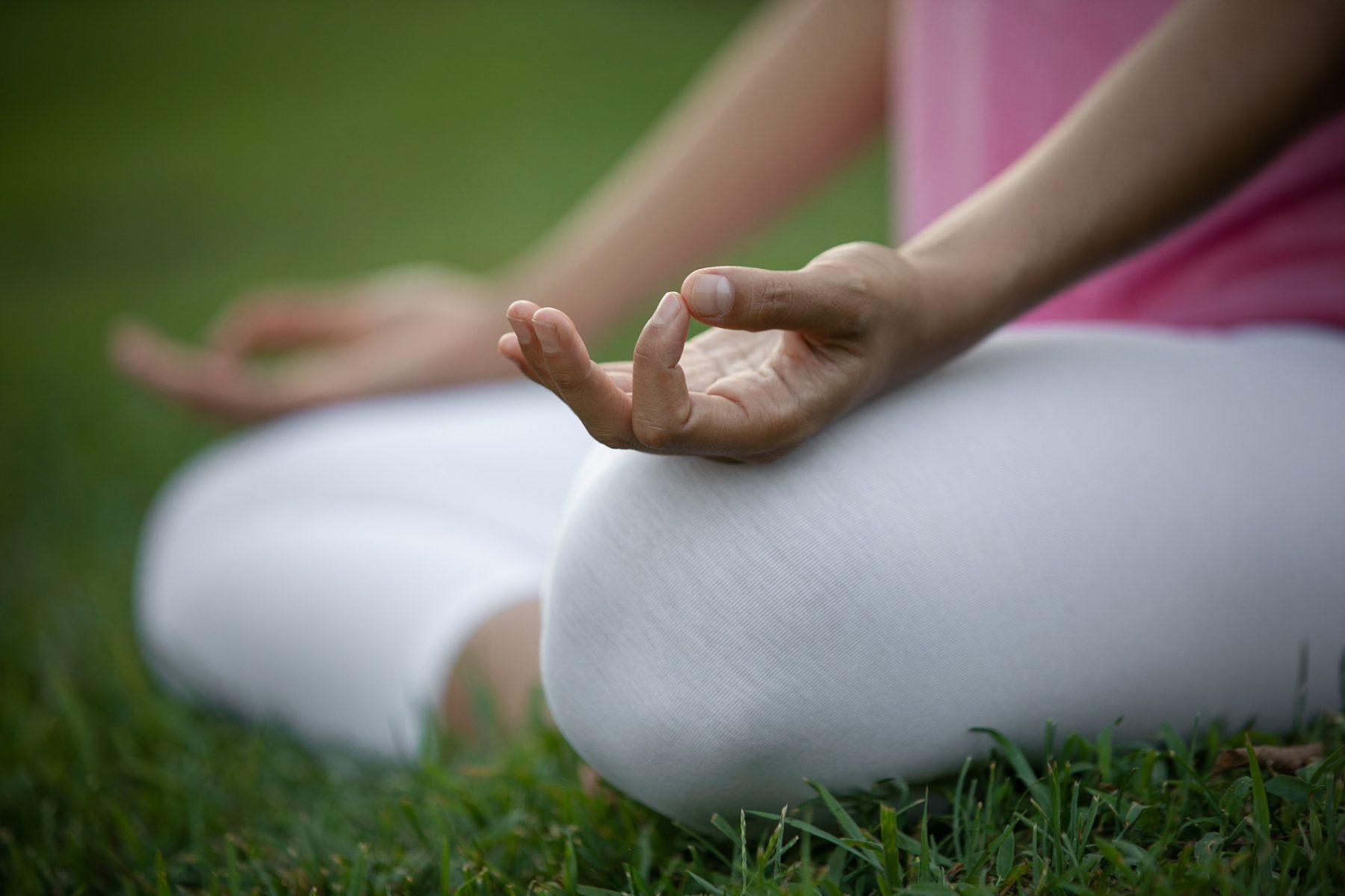 The Foundations of Meditation Retreat at the Sivananda Yoga Ranch