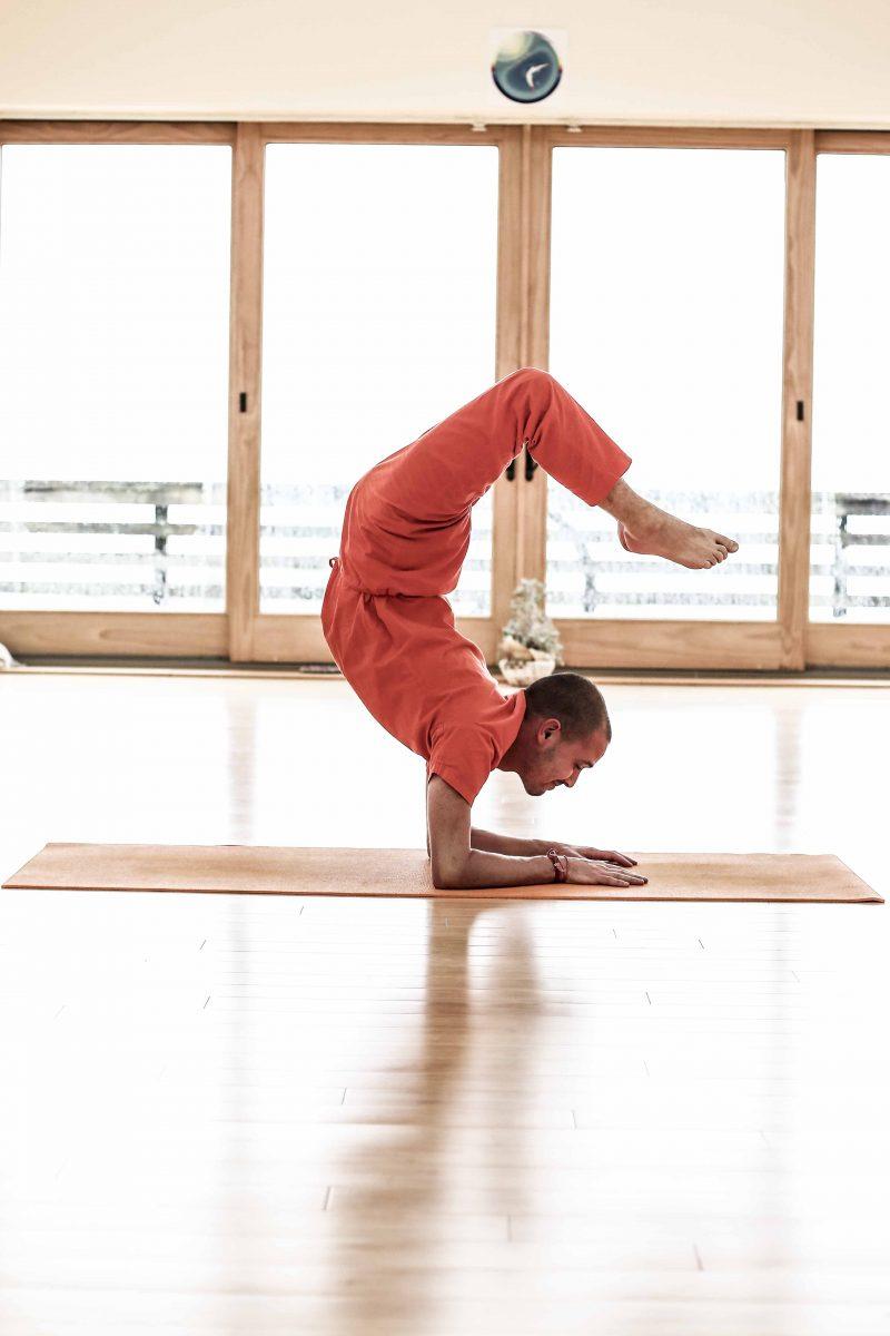 Hatha Yoga Intensive Retreat at the Sivananda Yoga Ranch