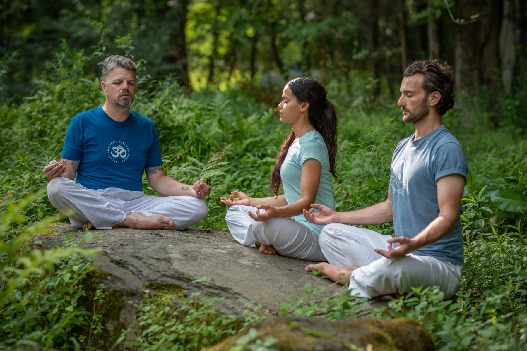 Essentials of Meditation Retreat at the Sivananda Yoga Ranch